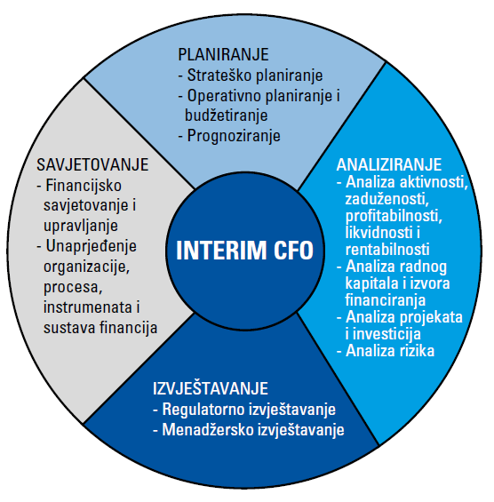 Interim CFO